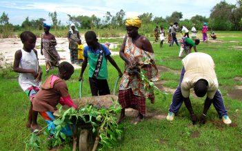 Appui au développement des énergies renouvelables (PRODER)-Sénégal