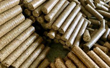 Briquettes de coques d'arachide Sénégal-APS