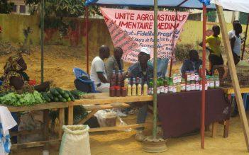 Appui aux initiatives économiques par les filières énergies (INECO)- Congo Brazzaville