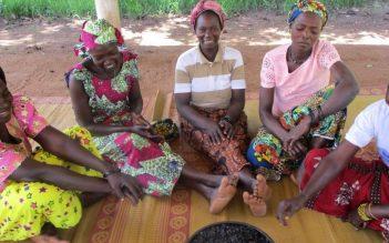 Les femmes de Tilo au coeur de l'expérimentation de biocombustiles