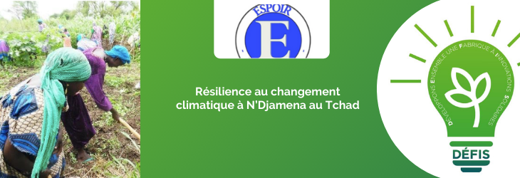 Résilience au changement climatique à N'Djamena au Tchad